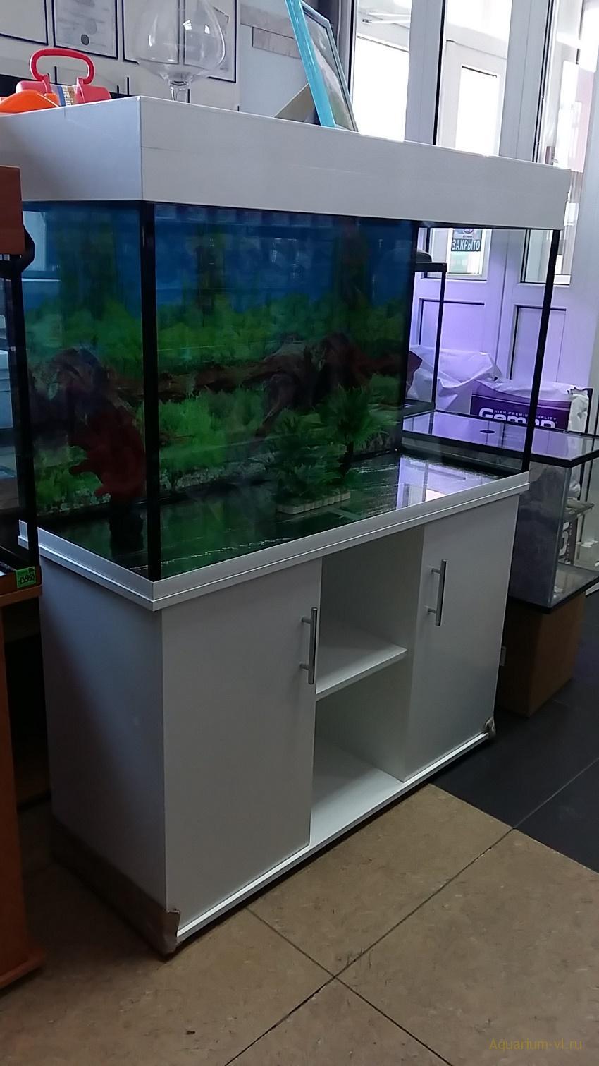 ремонт аквариумов в хабаровске