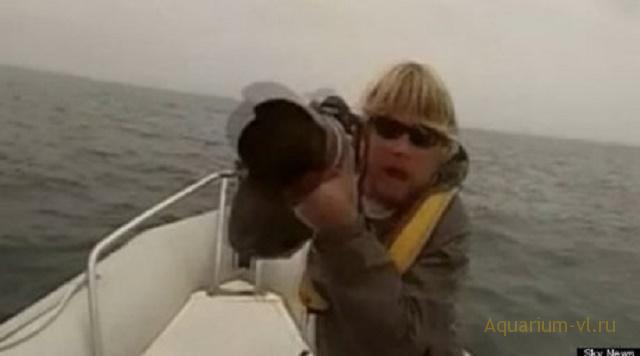 Синий кит атаковал лодку