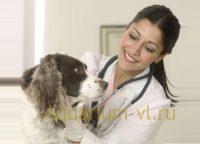 ветеринарная клиника Находка