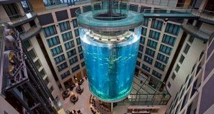 Самым большой в мире аквариум