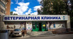 ветеринарная клиника Новосибирска