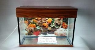 аквариум 105 литров
