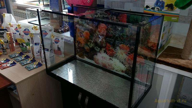 обзор аквариума 180 литров