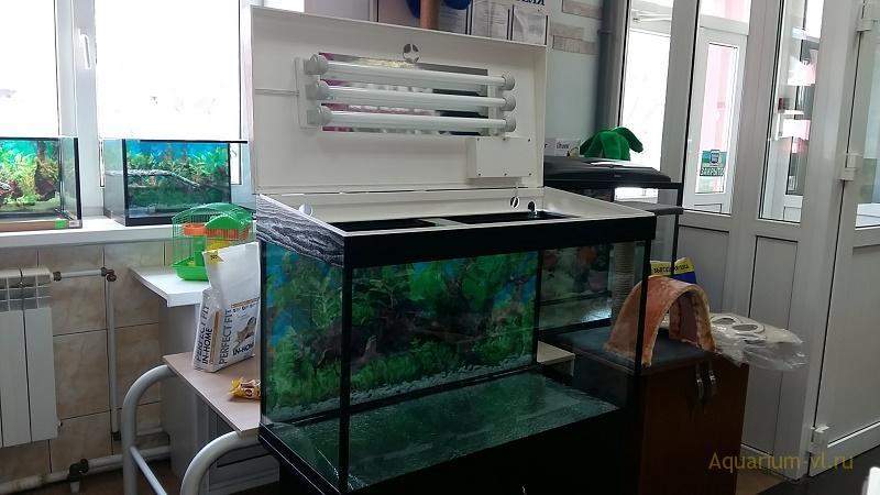 аквариум с крышкой