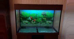 сборка аквариума 240 литров
