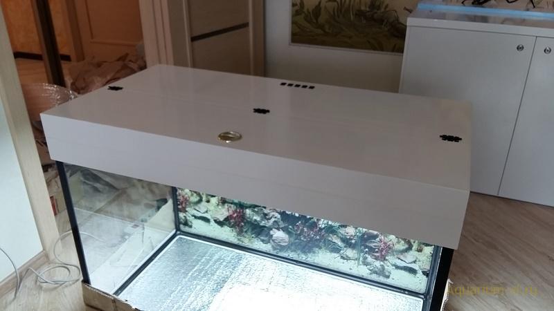 аквариум 300 литров для флауэр хорн