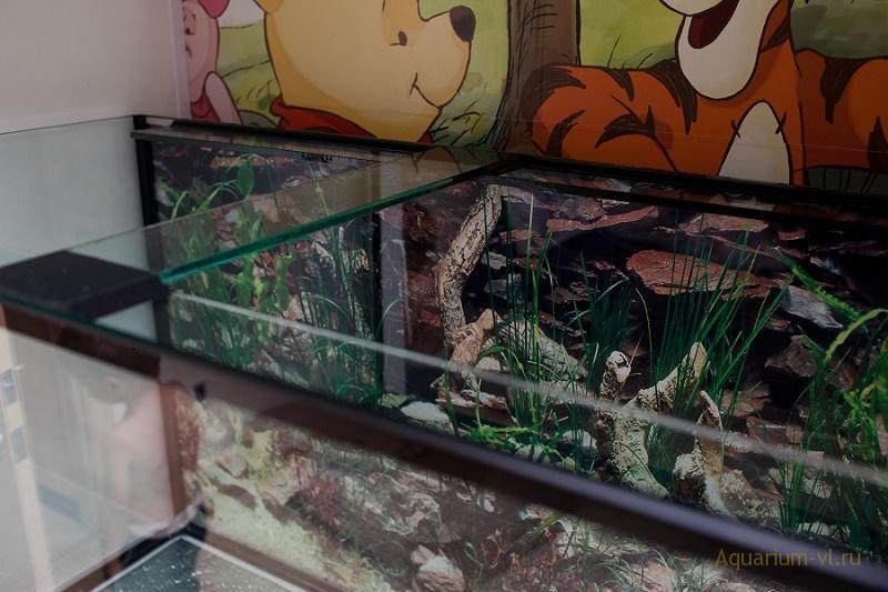 300 литровый аквариум