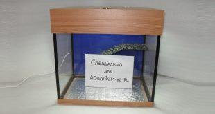 Террариум 40 литров сборка