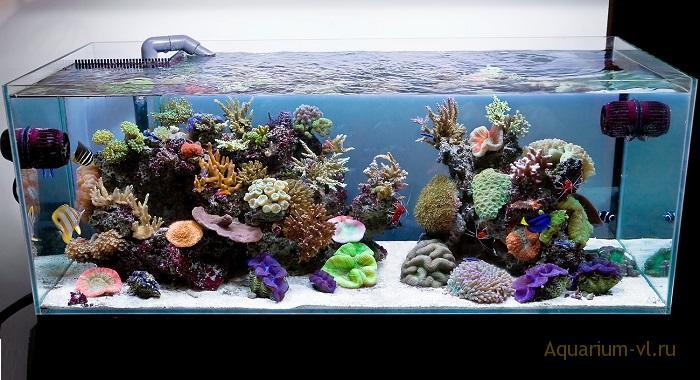 морской аквариум фосфаты