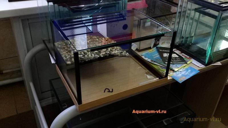 террариума на 60 л для красноухой черепахи