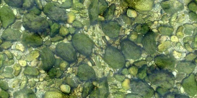 тёмно-зелёный налет на камнях