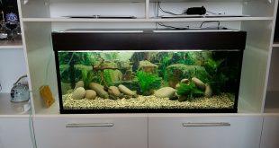 Аквариум 150 литров размеры