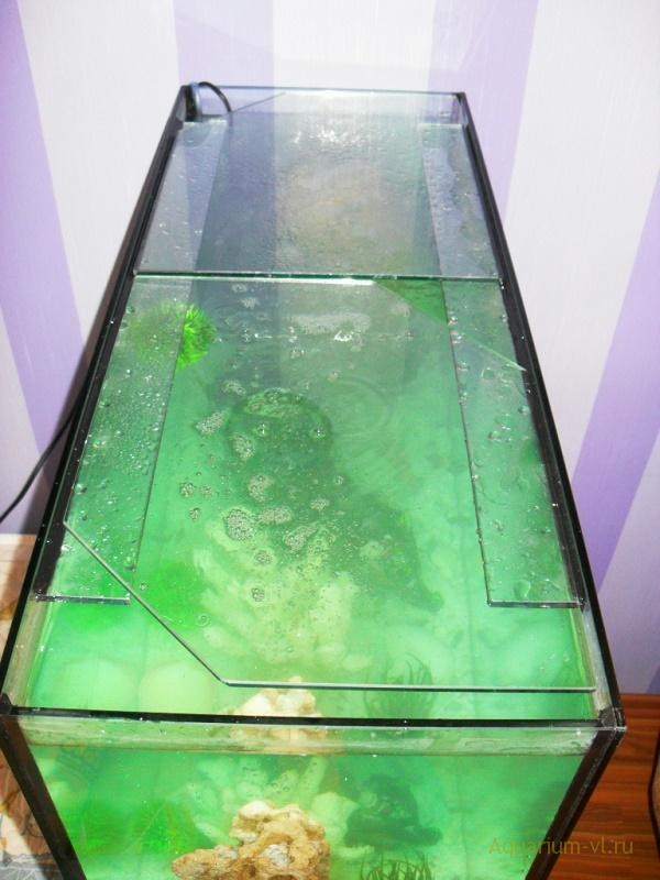Покровные стекла, цена 100 литров