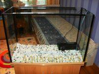 Аквариум 100 литров оформление