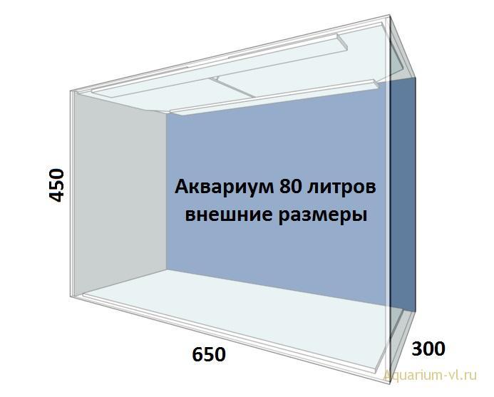 Внешние размеры аквариума 80 литров