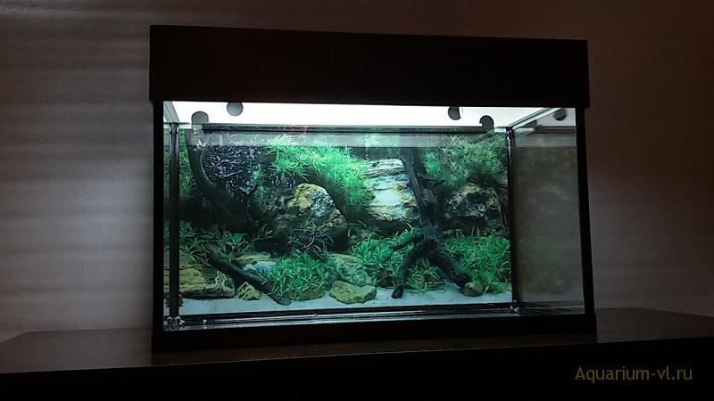 Аквариум 80 литров фото