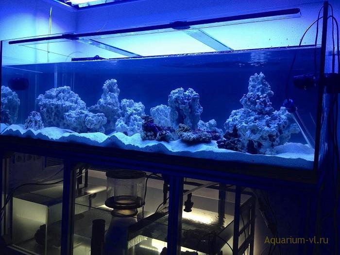 Какую воду добавлять в морской аквариум