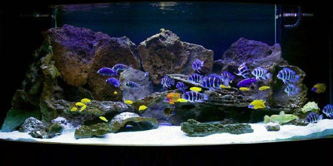 Камни в аквариум