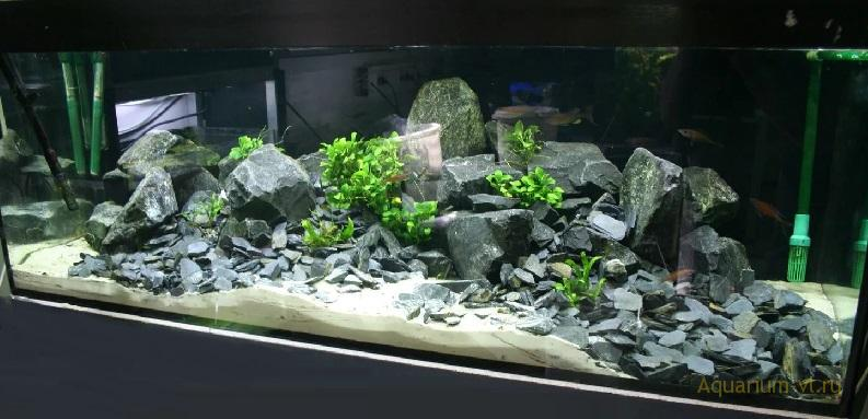 Как проверить камни для аквариума