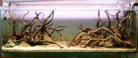 Коряга мангровая для аквариума