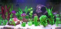 Искусственные растения аквариум