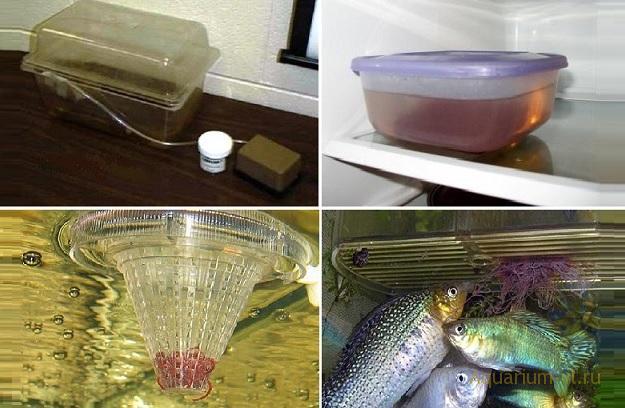 Трубочник для аквариумных рыбок