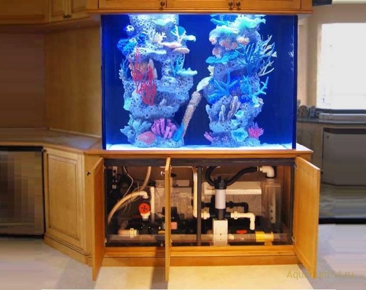 Оборудование для аквариумов нестандартной формы