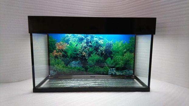 аквариум прямоугольный с крышкой