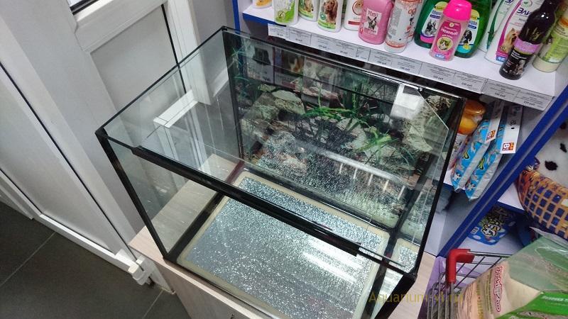 Размеры стекла на изготовление аквариума
