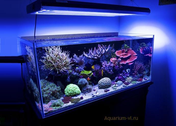 Морской аквариум 400 литров