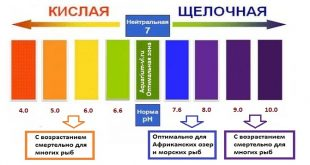 Параметры качества воды в аквариуме: pH, жёсткость, температура