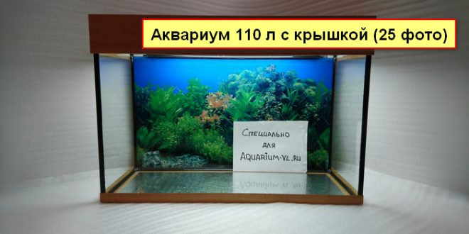 Аквариум 110 литров размеры