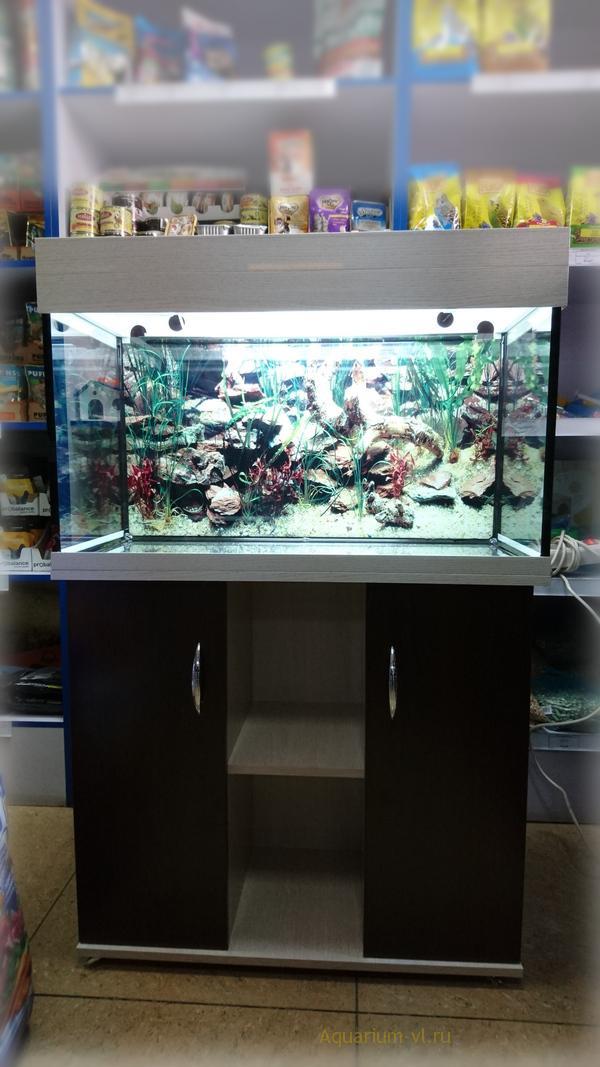125 литровый аквариум с тумбой