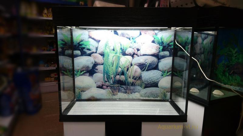 Аквариум на фото 140 литров