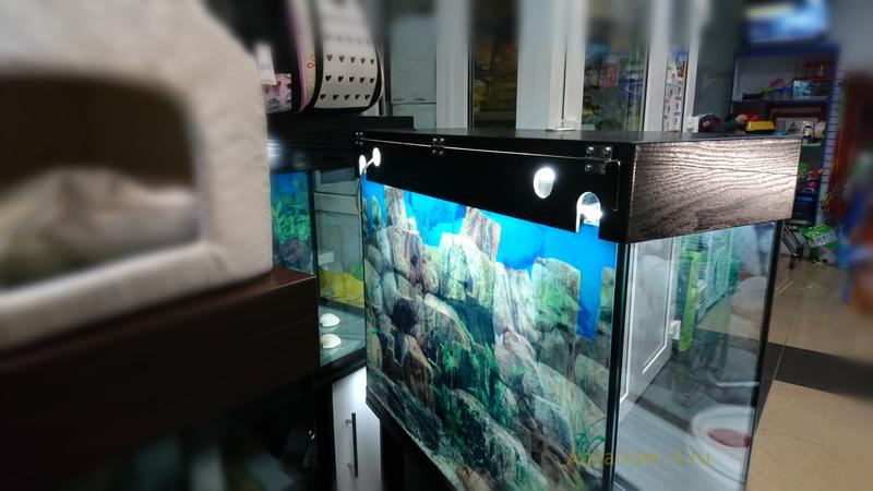 Светодиодные лампы установлены для подсветки аквариума