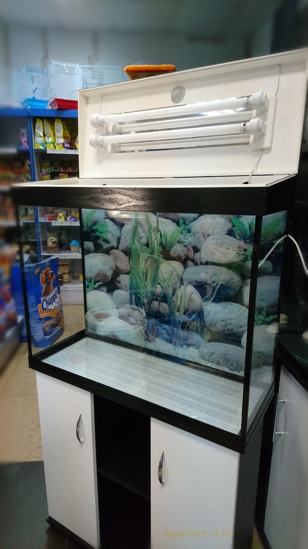 Недорогие аквариумы с тумбой