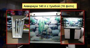 Фото аквариума 140 литров