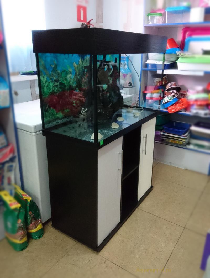Тумба под аквариум белая купить