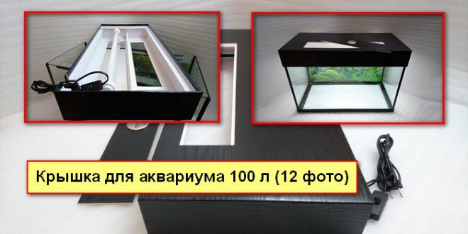 Крышка для аквариума 100 литров (17 фото): СЛ Т8R