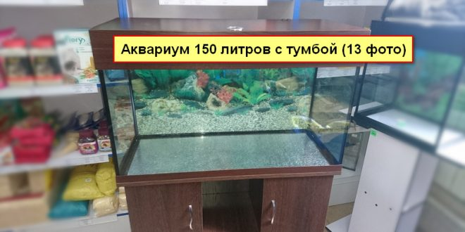Купить аквариум 150 литров с тумбой