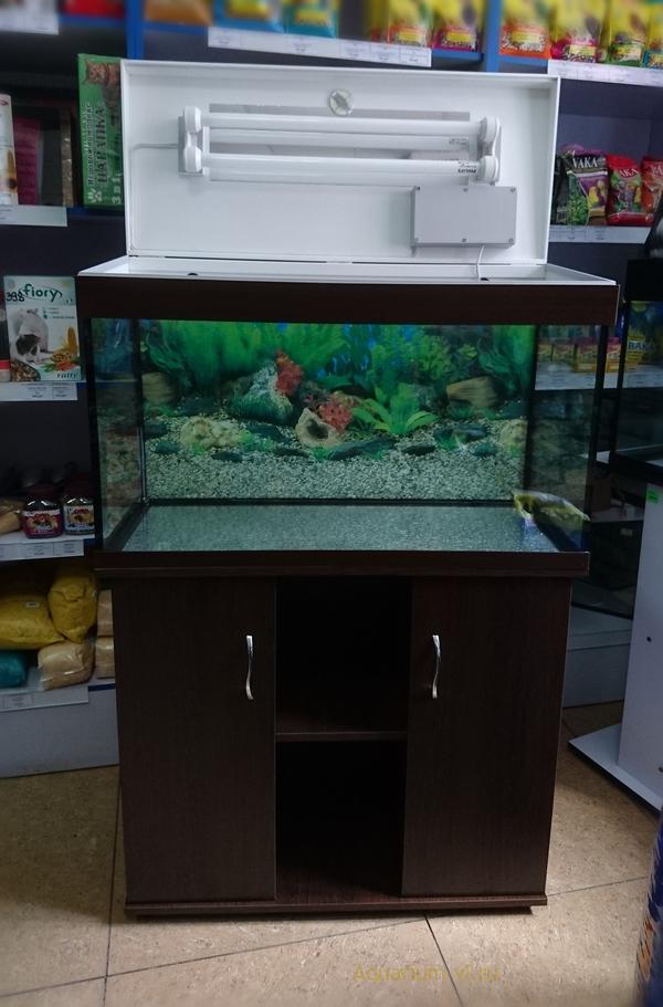 аквариум 150 литров цена без тумбы
