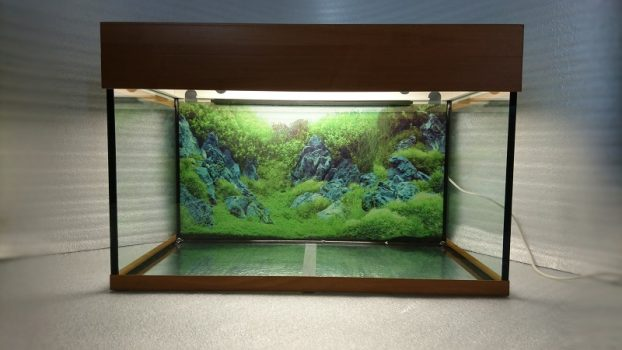аквариум 105 литров, Ольха
