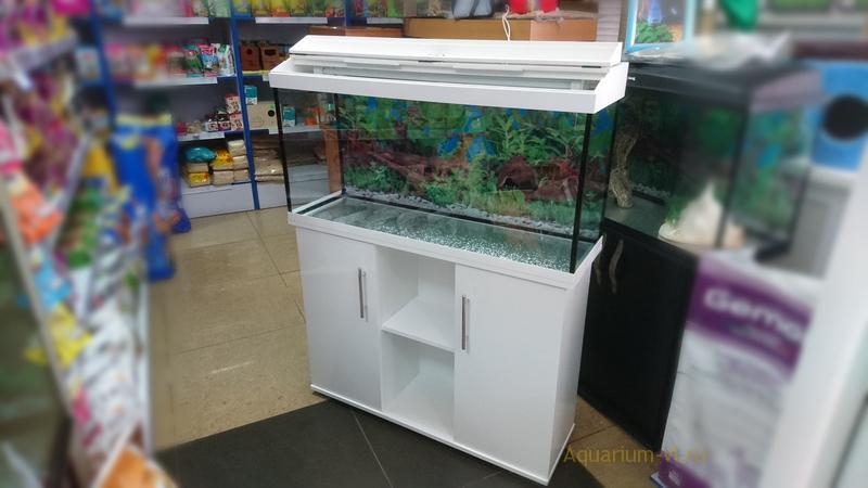 На фото аквариум 180 л с тумбой