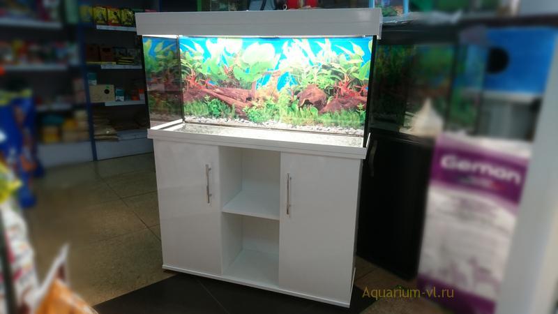 Оформление аквариумов фото на 180 литров