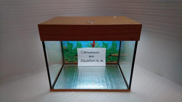 фото аквариум 100 л