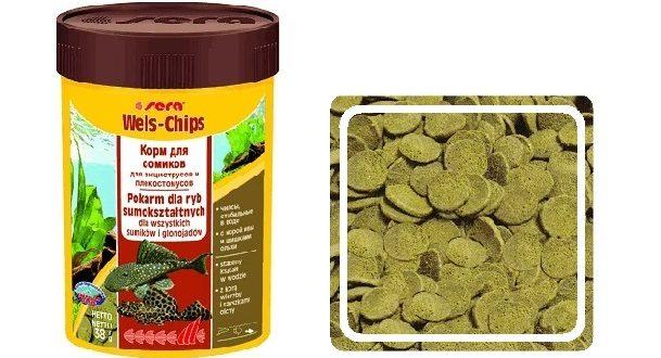 Sera Wels Chips: корм для анциструсов, птеригоплихтов