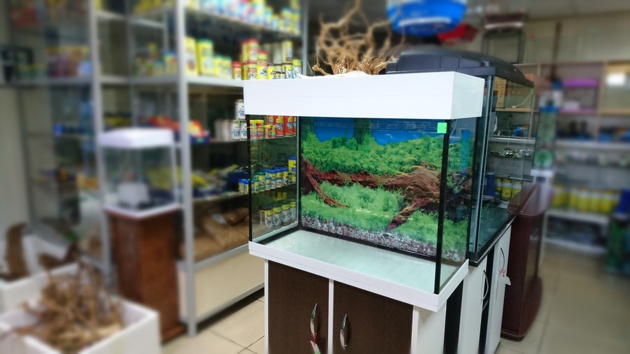 аквариум 100 литров своими руками