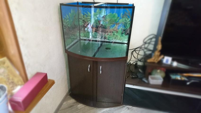 аквариум панорамный с тумбой купить