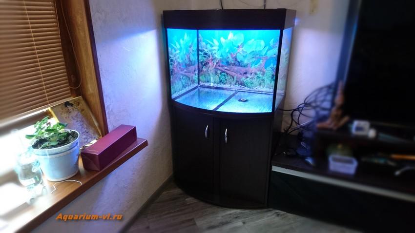панорамный аквариум +с тумбой по размерам