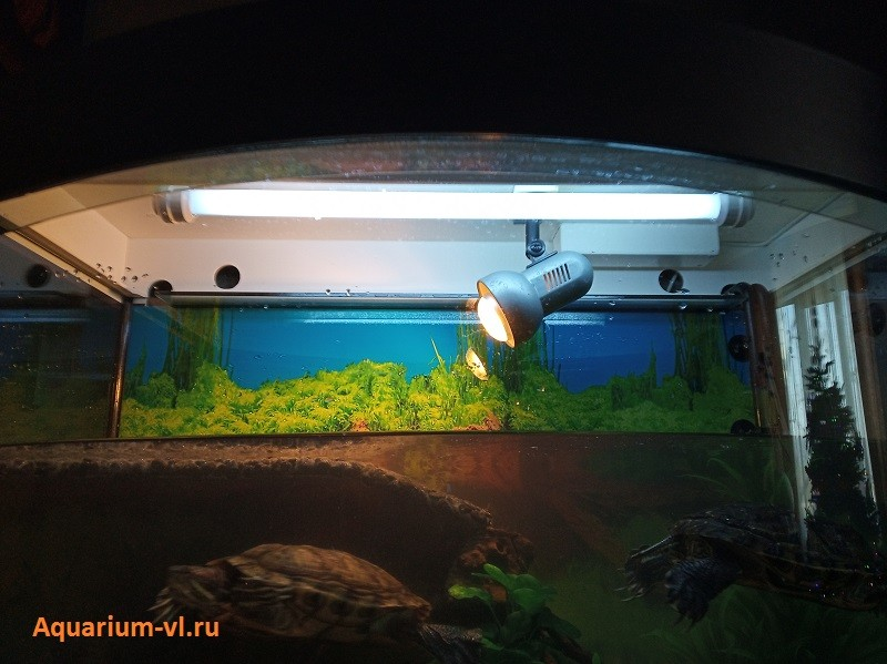 террариум для красноухой черепахи купить